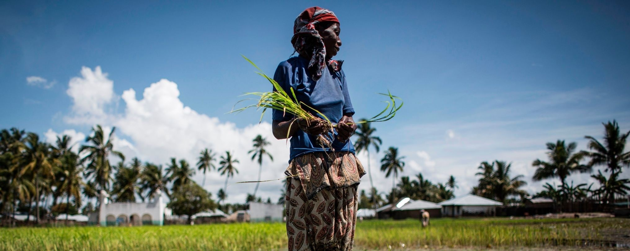 Rural women demand a seat at the table in Mozambique's National Land Policy Review